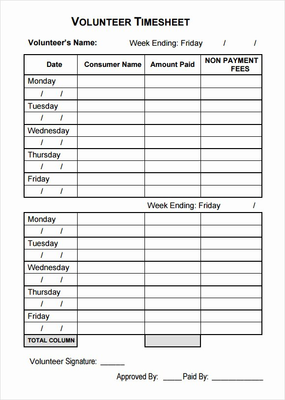 Tracking Volunteer Hours Template Unique 11 Volunteer Timesheet Samples