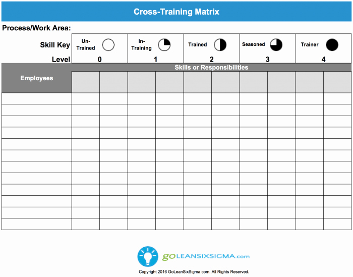 Training Matrix Template Excel Beautiful Cross Training Matrix Template & Example