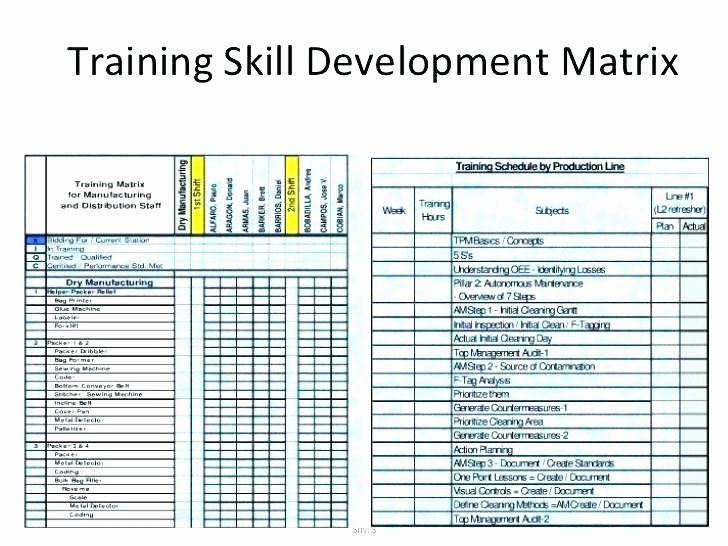 Training Matrix Template Excel Fresh Curriculum Matrix Template Training Matrix Example Excel