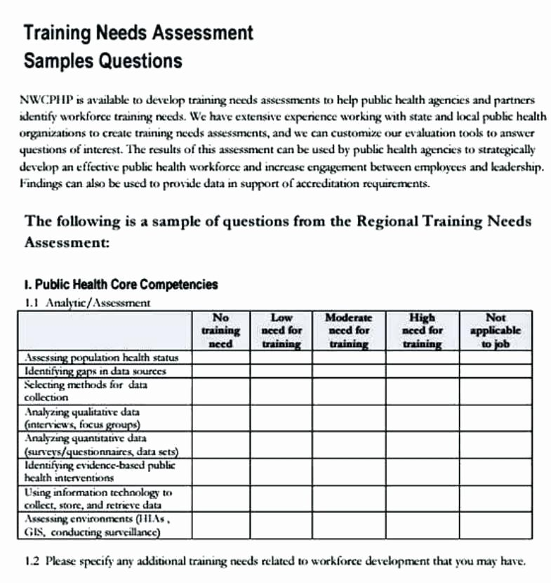 Training Needs Analysis Template Awesome Camp Counselor Resume Vice President Information