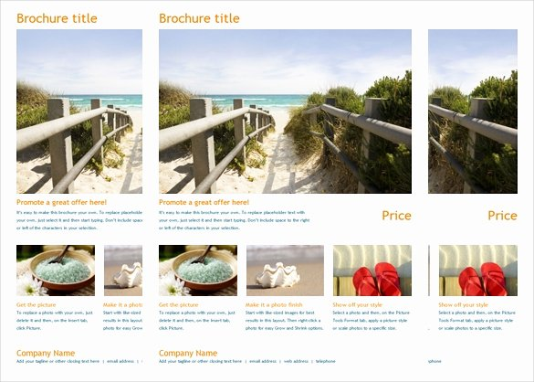 Travel Brochure Template Word Best Of Brochure Template Word 41 Free Word Documents Download