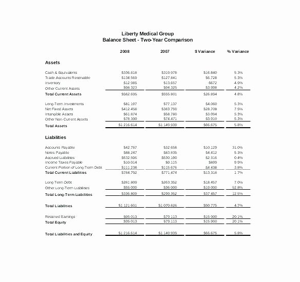 Treasurer Report Template Excel New Treasury Report Template Treasurers Pta Treasurer