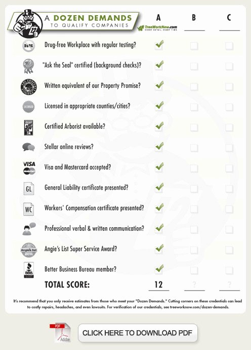 Tree Service Estimate Template Elegant 10 Best Of Tree Removal forms Tree Removal