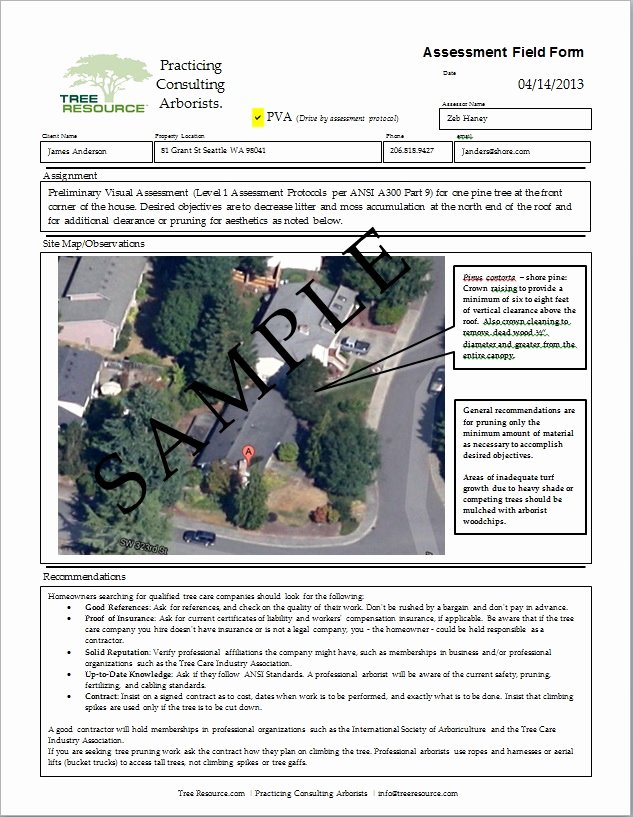 tree removal quote template