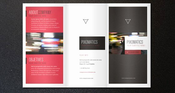 Tri Fold Template Indesign Elegant 10 Free Indesign Templates
