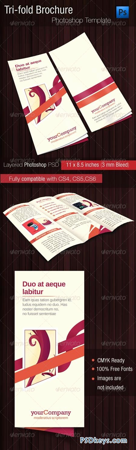 Tri Fold Template Photoshop Elegant Tri Fold Brochure Psd Template Free Download