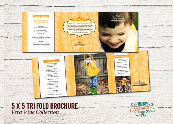 Tri Fold Template Photoshop Fresh 10 Tri Fold Brochures