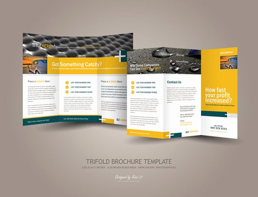 Trifold Brochure Template Photoshop Beautiful Business Tri Fold Brochure Designs Dzinepress