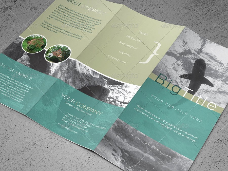 Trifold Brochure Template Photoshop Best Of 50 Premium & Free Psd Tri Fold Brochureb Templates for
