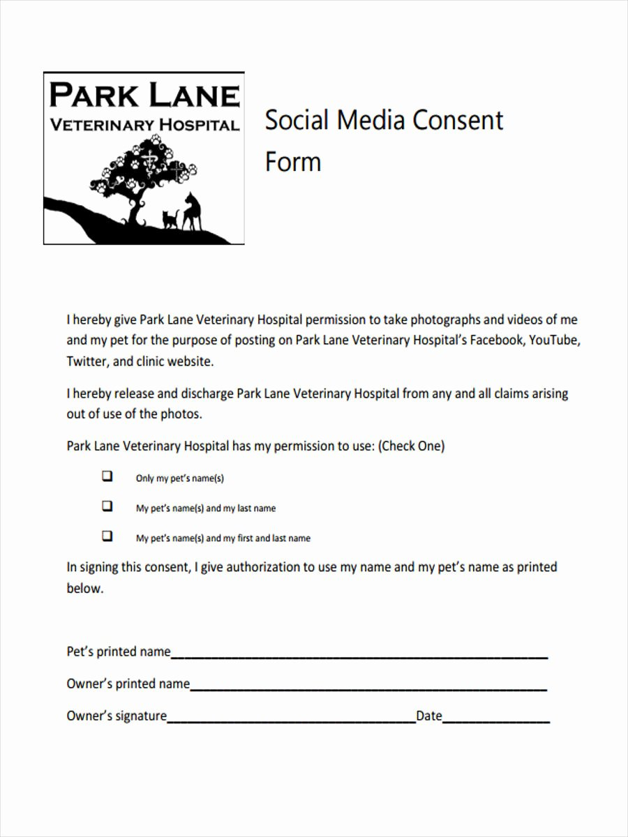 Video Consent form Template Beautiful 8 Media Consent form Samples Free Sample Example