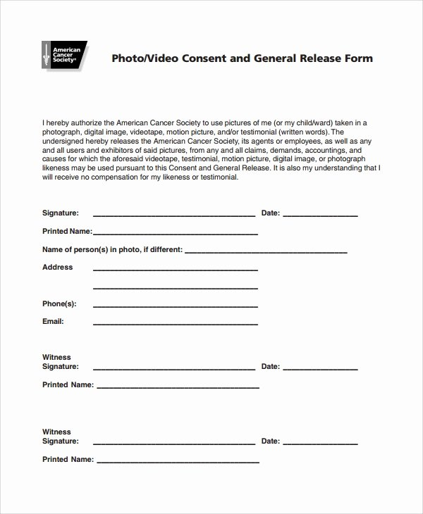 Video Consent form Template Fresh 10 Graphy Consent forms