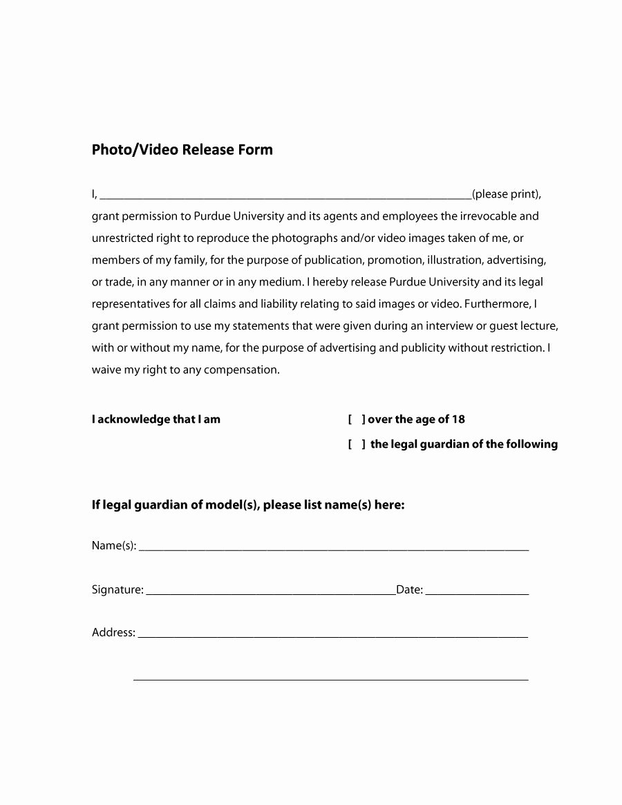 Video Consent form Template Lovely 53 Free Release form Templates [word Pdf]