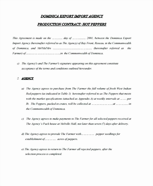 Video Production Contract Template Awesome Production Agreement Template