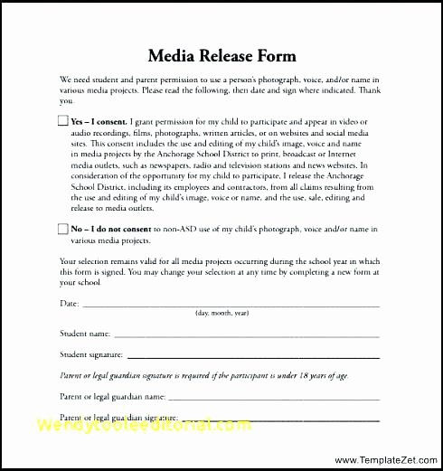 Video Release forms Template New Release form Template Consent Video – Btcromaniafo