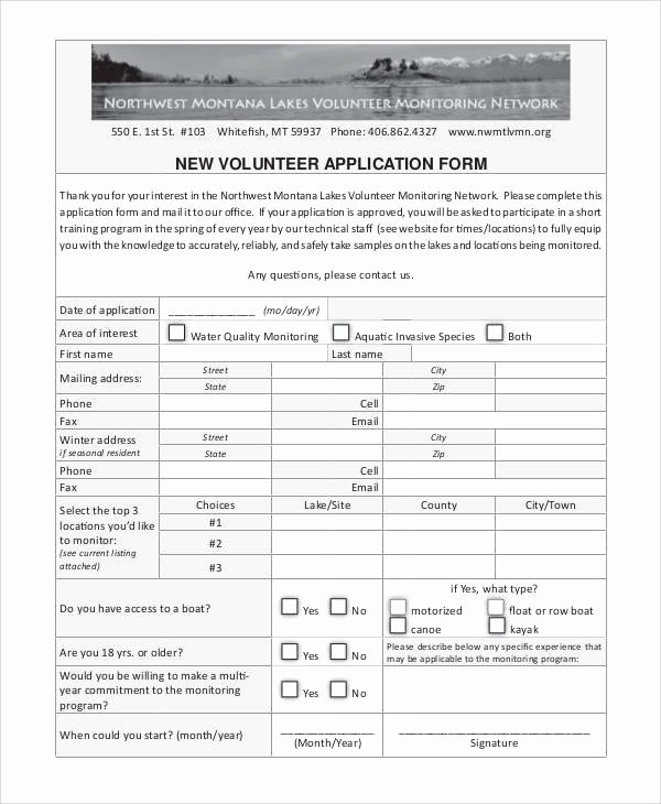 Volunteer Application form Template Inspirational 66 Basic Application forms