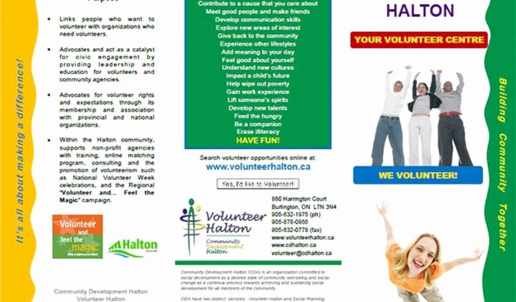 Volunteer Flyer Template Free Best Of Volunteer Brochure Examples Exclusiveinternetdirectory