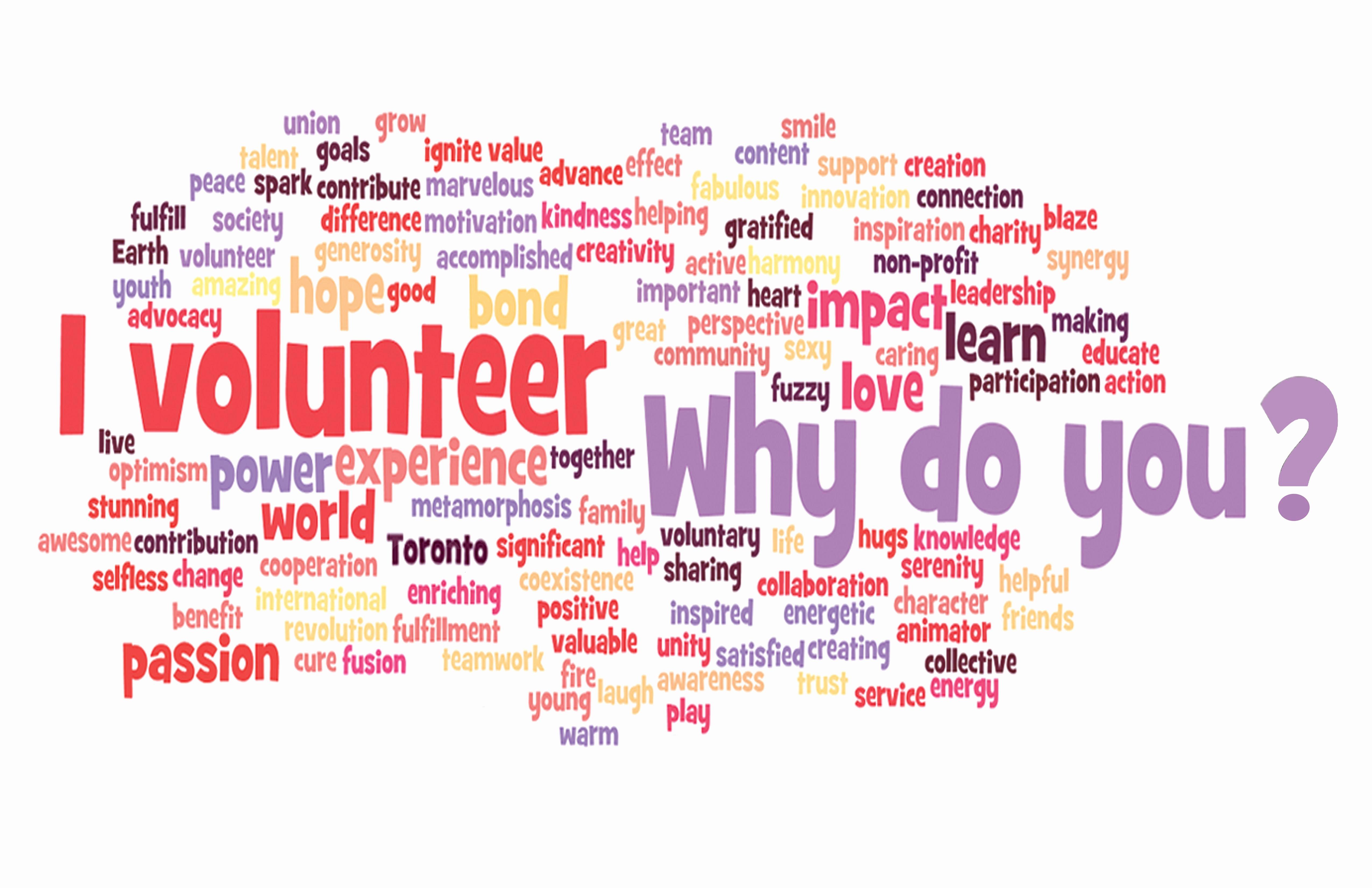 Volunteer Flyer Template Free Luxury Volunteer Flyer Templates Google Search