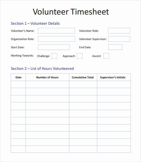 volunteer timesheet template