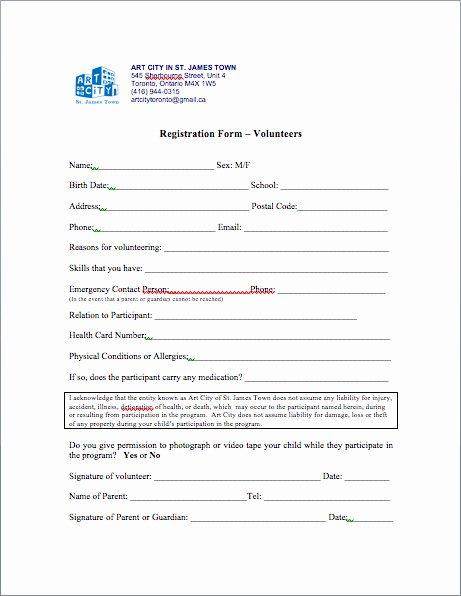 Volunteers Application form Template Fresh Artbridges