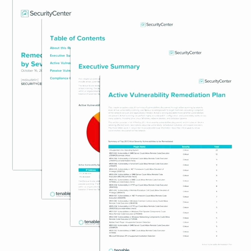 Vulnerability assessment Report Template Awesome Security Risk assessment Template Vulnerability Report