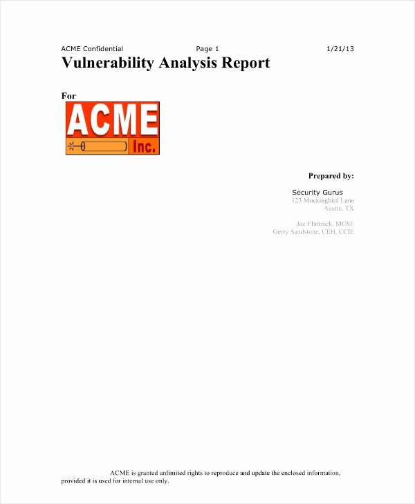 Vulnerability assessment Report Template Best Of 12 Vulnerability assessment Templates Pdf Doc Pages