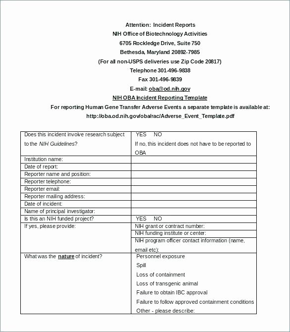 Vulnerability assessment Report Template Inspirational assessment Report Template Download Full Size Image