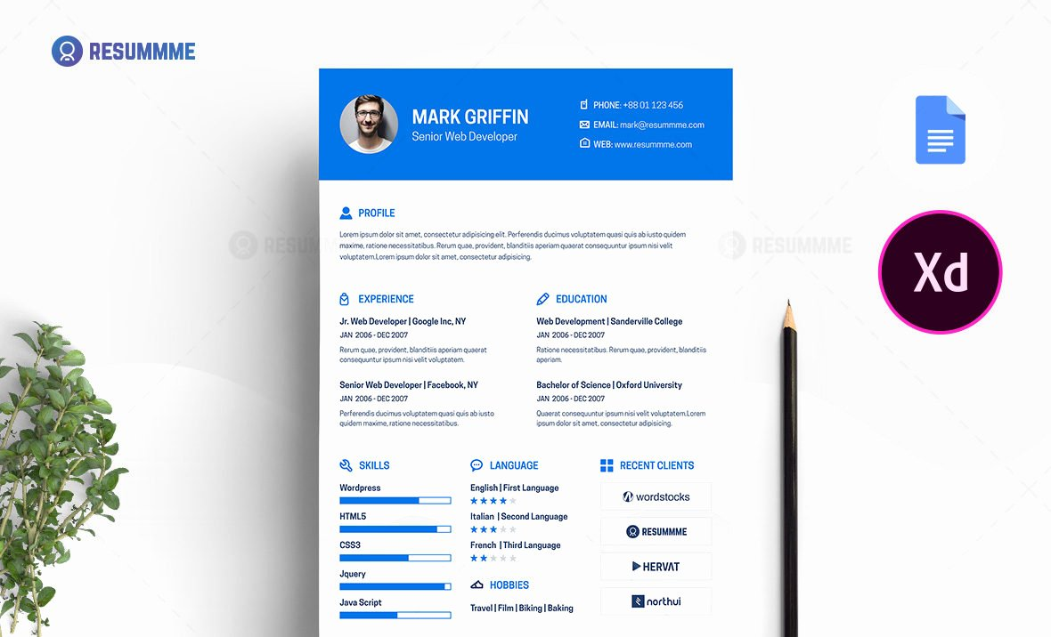 Web Developer Resume Template New Web Developer Resume Template Free
