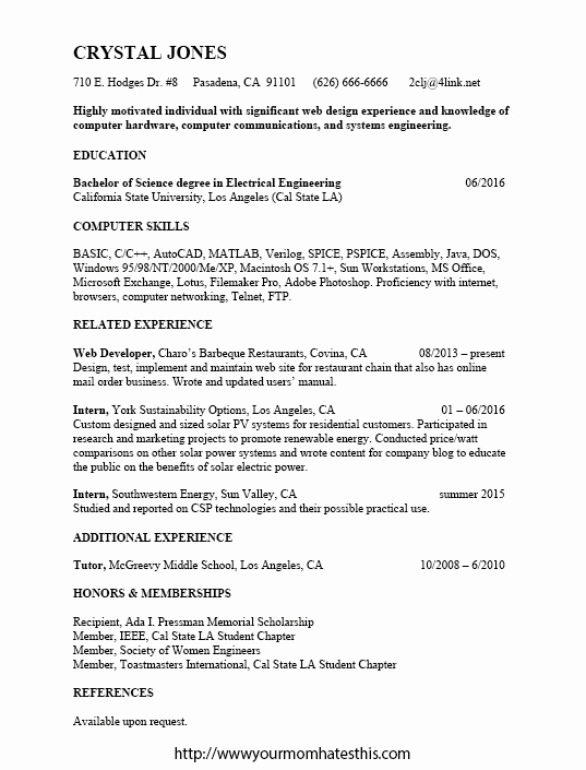 Web Developer Resume Template Unique Download Resume format & Write the Best Resume