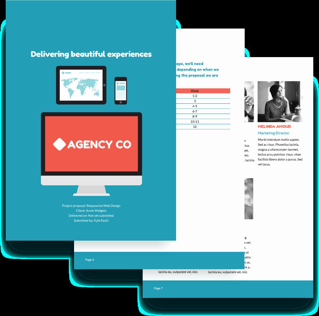 Web Development Proposal Template Luxury Web Design Proposal Template Free Sample