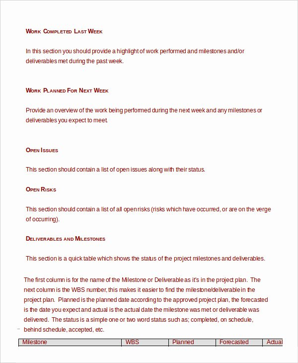 Weekly Management Report Template Awesome Project Management Template 10 Free Word Pdf Documents