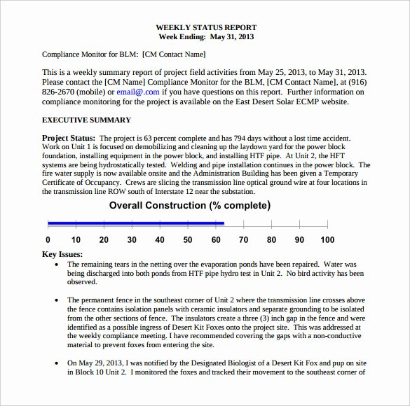 Weekly Management Report Template Best Of 33 Weekly Activity Report Templates Pdf Doc