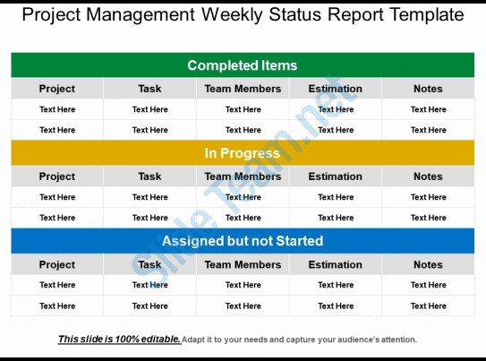 Weekly Management Report Template Elegant Project Management Weekly Status Report Template