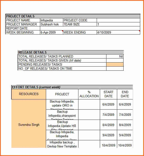 Weekly Report Template Excel Lovely 8 Weekly Status Report Template Doc Bud Template Letter