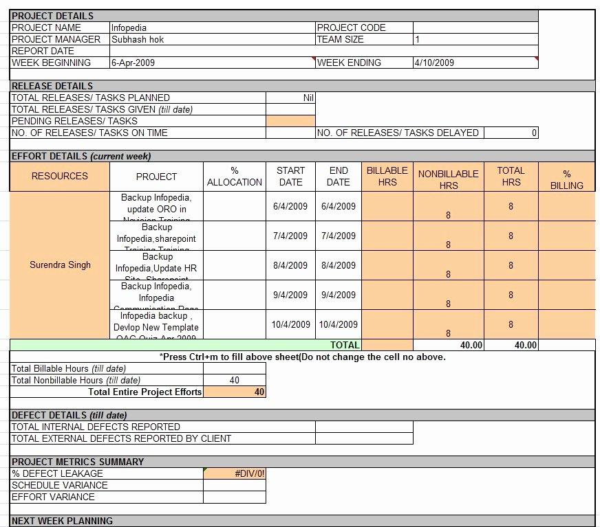 Weekly Report Template Excel New Weekly Status Report Template Excel