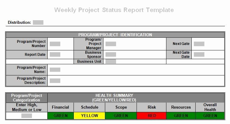 Weekly Status Report Template Elegant Tronmaster On