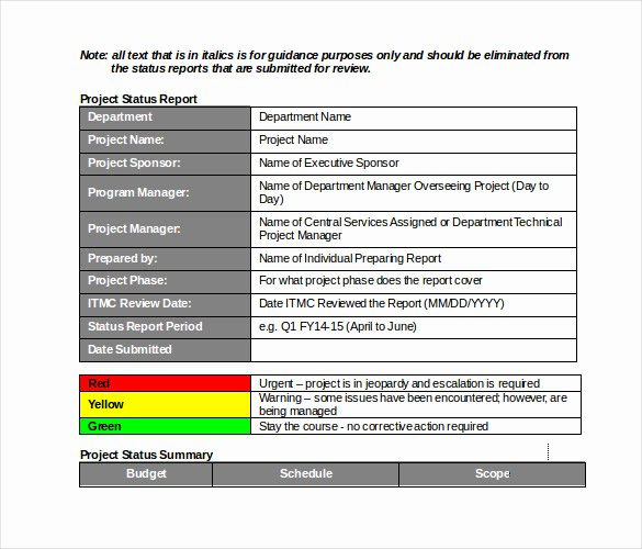 Weekly Status Report Template Lovely 19 Monthly Report Template Free Sample Example format