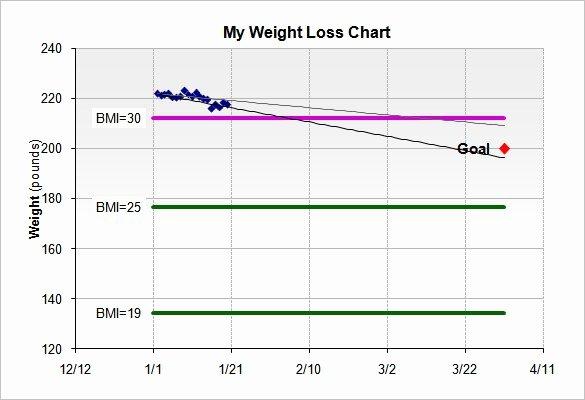 Weight Loss Calendar Template Fresh Simple Weight Loss Chart Template Printable Excel Template