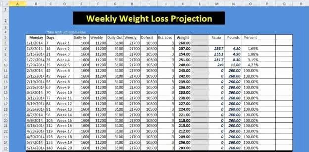 Weight Loss Tracker Template Lovely 9 Weight Loss Challenge Spreadsheet Templates Excel