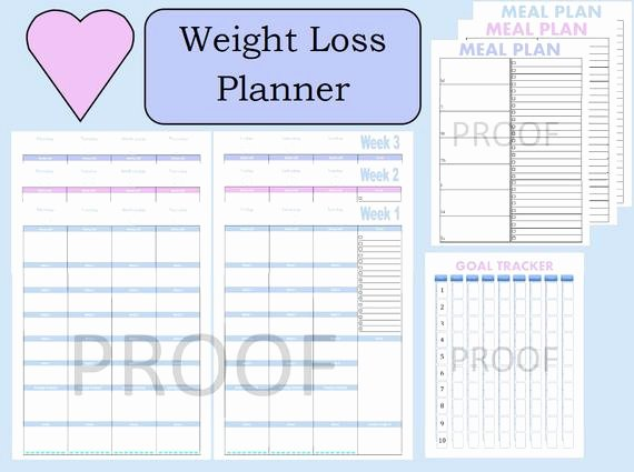 Weight Loss Tracker Template New tone It Up Journal Weight Loss Planner Weight Loss Tracker