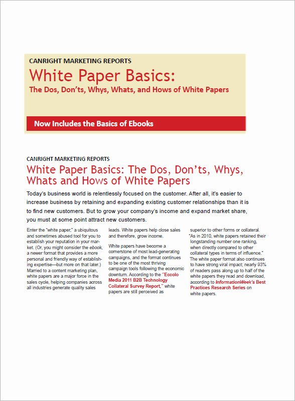 White Paper Template Doc Awesome 13 White Paper Templates – Pdf Word