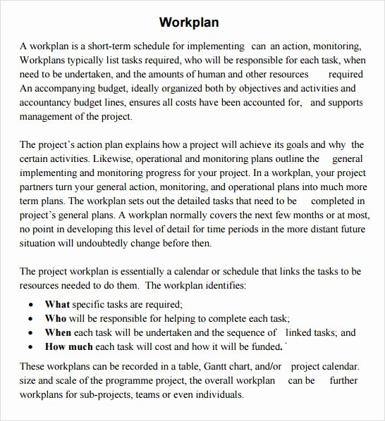 Work Plan Template Word Beautiful Work Plan Template 17 Download Free Documents for Word