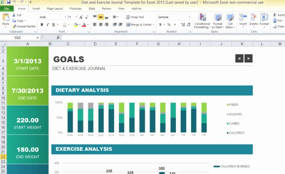 Workout Log Template Excel Awesome Diet and Exercise Journal Template for Excel 2013