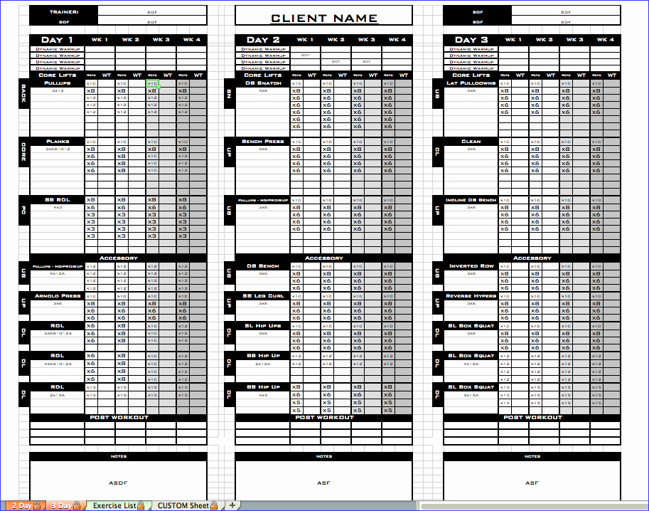 Workout Log Template Excel Inspirational Workout Log Template Excel