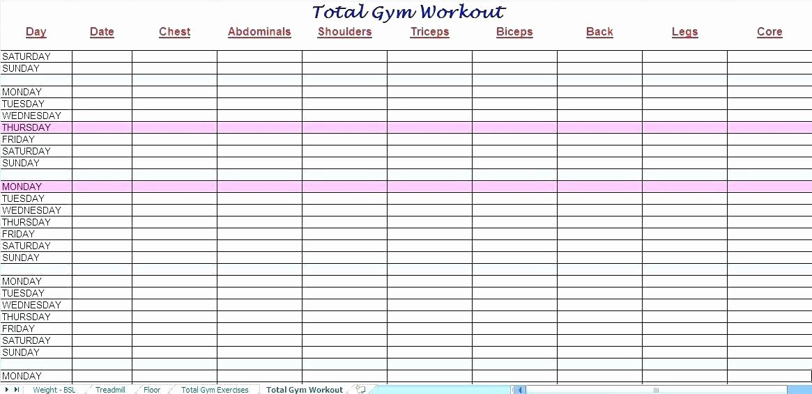 Workout Log Template Excel Unique Gym Workout Log Template