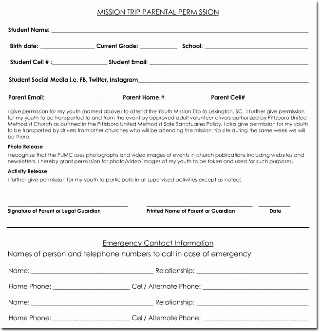 Youth Permission Slip Template Awesome Youth Permission Slip Template Doc Monster Logo Trip