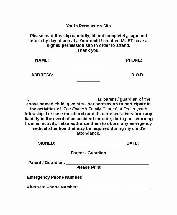 Youth Permission Slip Template Inspirational 11 Slip Templates Free Sample Example format